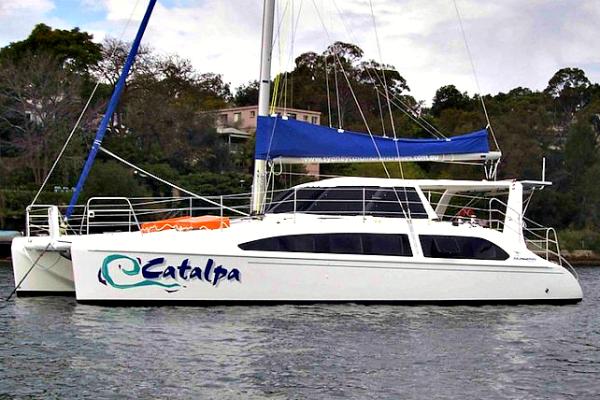 catalpa8